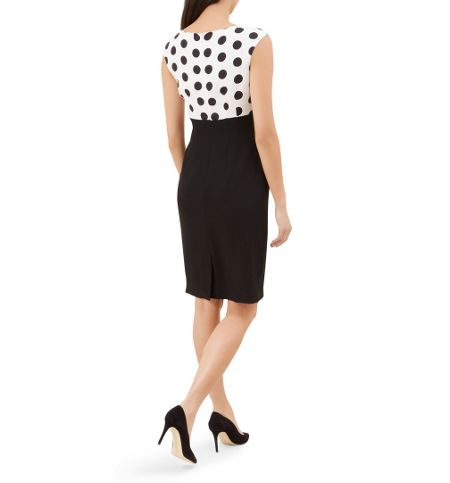 Hobbs Willow Spot Dress