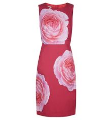 Hobbs Christiana Dress