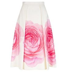 Hobbs Christiana Skirt