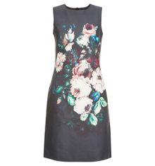 Hobbs Painted Blooms Dress