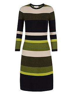 Fern Stripe Dress
