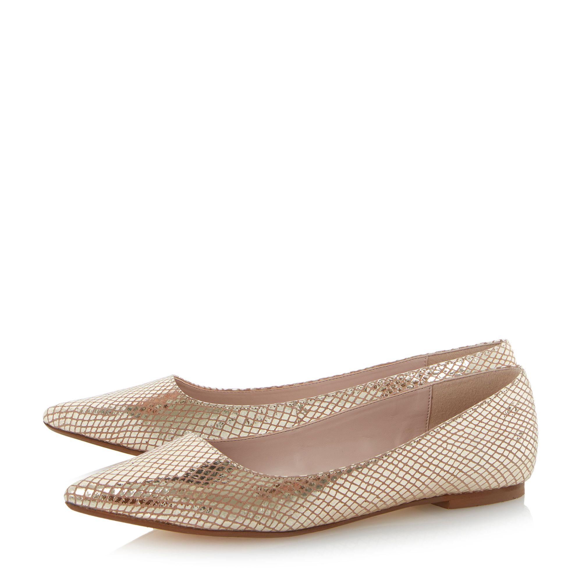 Amarie flat pointed toe court shoes