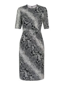 Whistles Snake Print Silk Bodycon