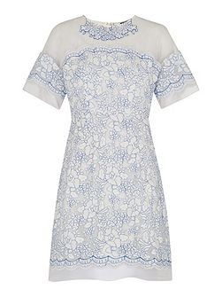 Avril Lace Fluted Sleeve Dress