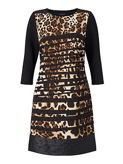 Leopard Stripe Dress