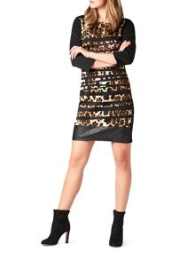 James Lakeland Leopard Stripe Dress