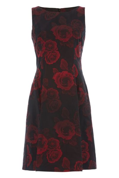 Roman Originals Rose Print Jacquard Dress