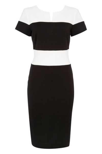 Roman Originals Ponte Contrast Notch Neck Dress