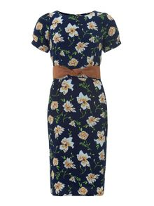 Trollied Dolly Straight and Narrow Dress