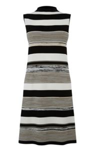 Warehouse Stripe Spacedye Dress