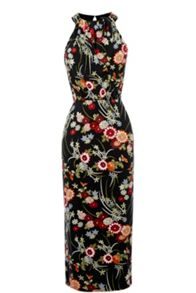 Warehouse Oriental Floral Dress