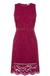 Warehouse Bonded Lace Sleeveless Dress