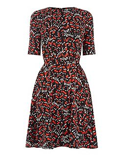 Tiger Moth Flippy Dress