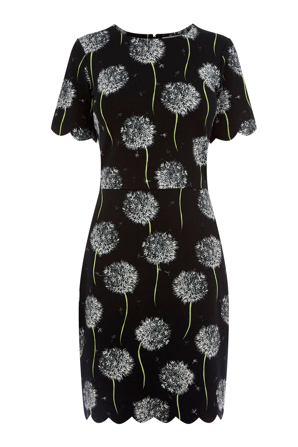 Warehouse Dandelion Print Scallop Dress, Black