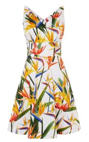 Karen Millen Bird-Print Cotton Dress