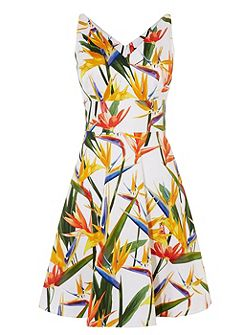 Bird-Print Cotton Dress