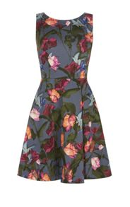 Karen Millen Stormy Roses Dress