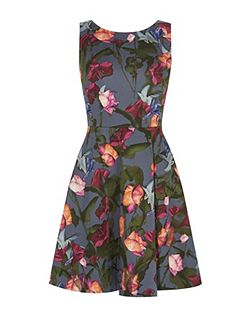 Stormy Roses Dress