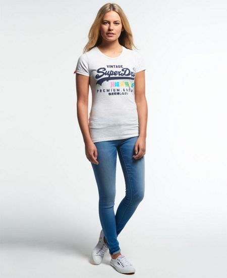 Superdry Premium Goods Rainbow T-shirt