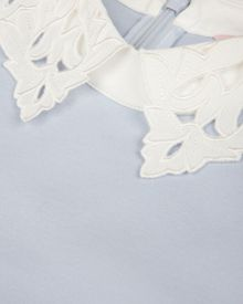 Currie lace collar tunic