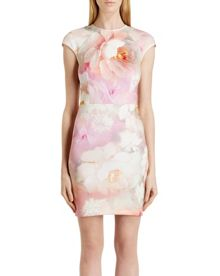Quaro rose on canvas dress