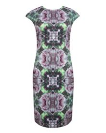 Cambree rose print midi dress
