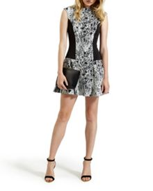 Liri Snake jacquard skater dress