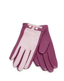 Sue Suede stud detail gloves