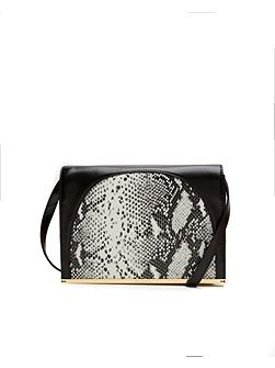 Allys Snake metallic bar clutch bag