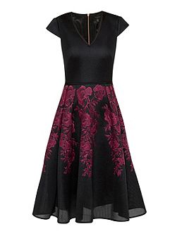 Levana Embroidered mesh full skirt dress