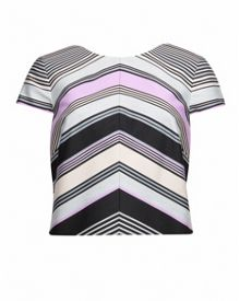 Arca Stripe Print crop top
