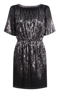Scatter Sequin Dress