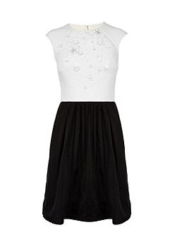 Full skirted dress with floral applique
