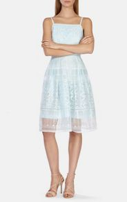 Full skirted embroidered organza dress