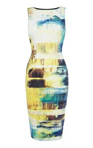 Art print stretch dress