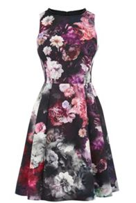 Oasis Winter Floral Skater Dress