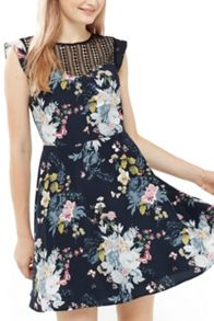 Oasis Botanical Bouquet Skater Dress