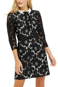 Oasis Lace Collar Dress