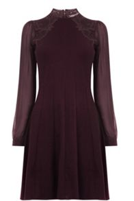Oasis Lace Swing Dress
