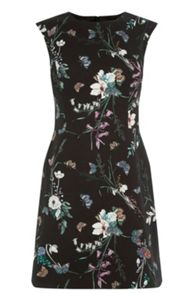 Oasis Sherwood Shift Dress