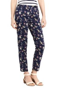 Oasis Humming Bird Print Trouser
