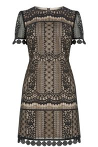 Oasis Graphic Lace Shift Dress