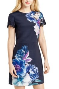 Oasis Georgia Placement Shift Dress