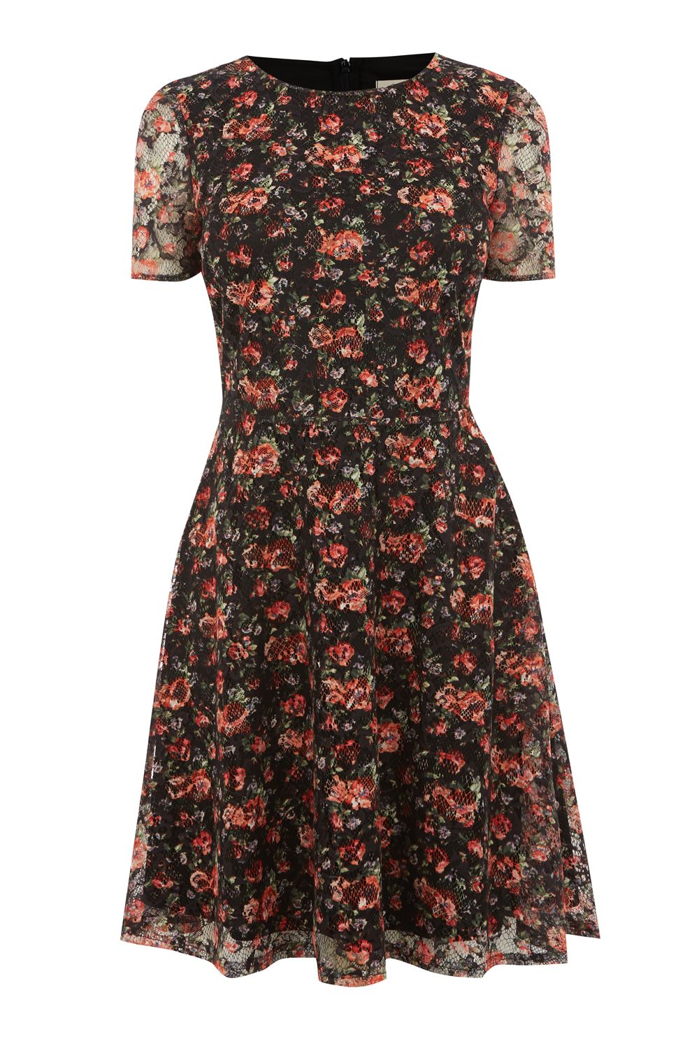 Oasis SMALL ROSE LACE DRESS, Multi-Coloured