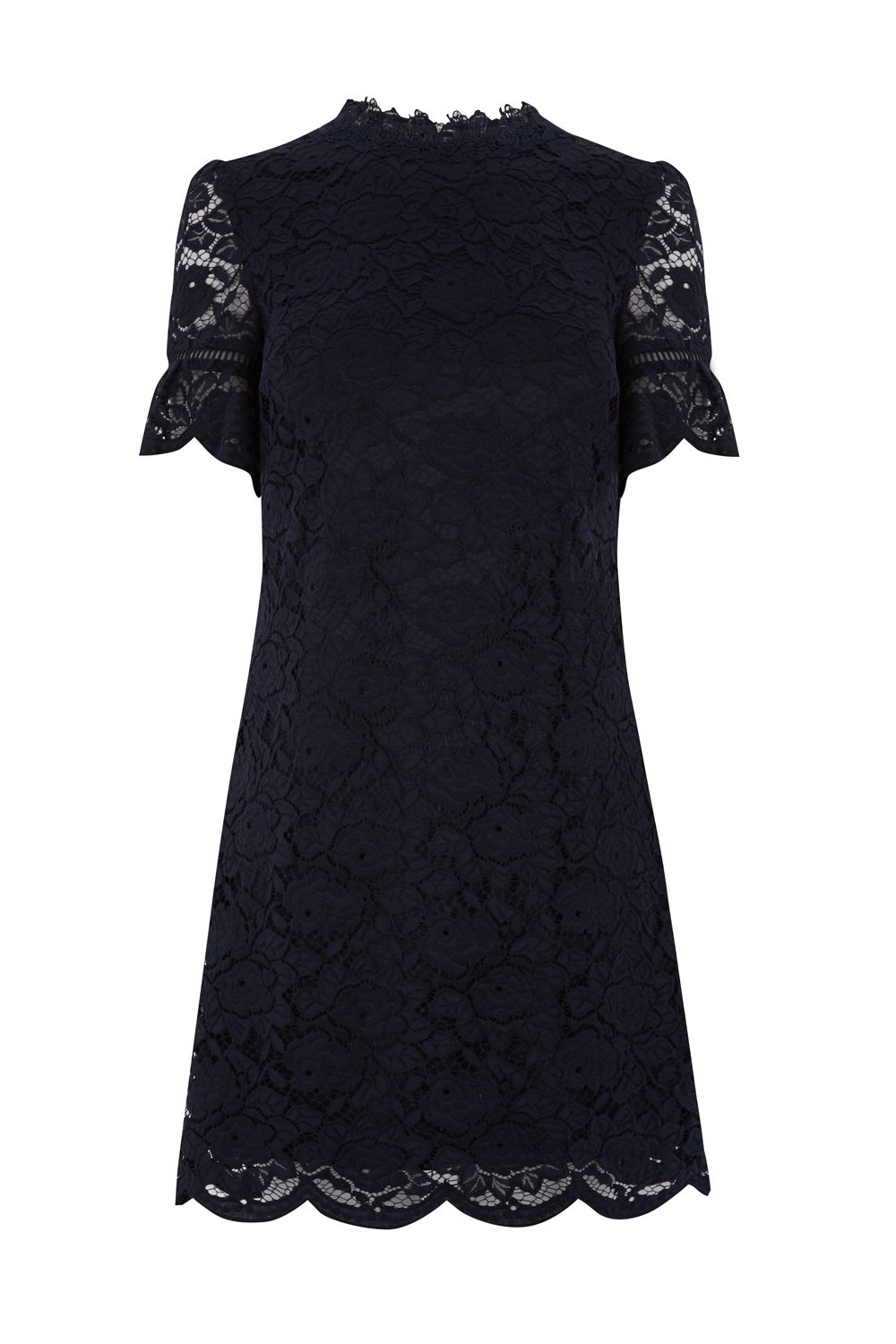 Oasis Lace High Neck Flute Slv Dress, Blue
