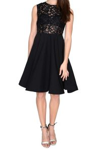 True Decadence Lace Skater Prom Dress