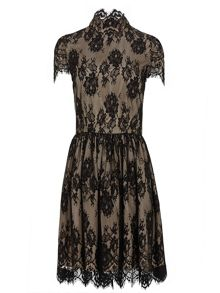 Zibi London Lace/Satin Cap Sleeved Dress