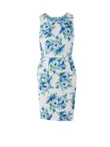 Zibi London Floral Print Necklace Dress