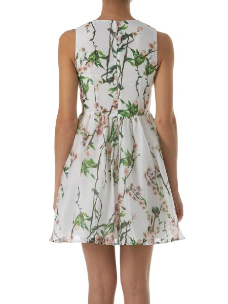Zibi London Organza Floral Printed Dress