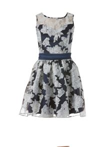 Zibi London Organza Floral Satin Sash Dress